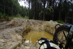 tasmanien 106 copyright piotr nogal