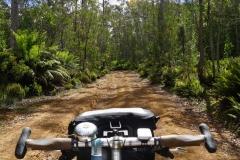 tasmanien 107 copyright piotr nogal