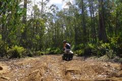 tasmanien 108 copyright piotr nogal