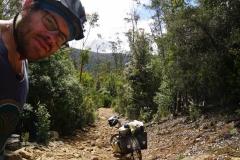 tasmanien 110 copyright piotr nogal