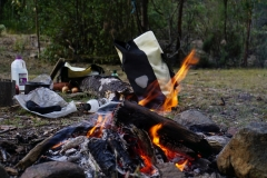 tasmanien 114 copyright piotr nogal