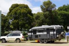 tasmanien 117 copyright piotr nogal
