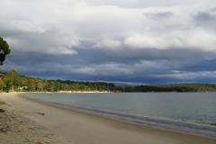 tasmanien 123 copyright piotr nogal