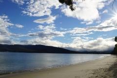 tasmanien 124 copyright piotr nogal