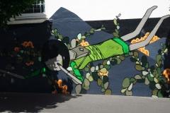 tasmanien 152 copyright piotr nogal