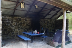 tasmanien 158 copyright piotr nogal