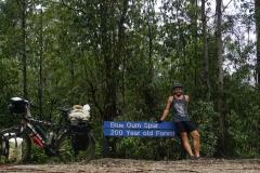 tasmanien 159 copyright piotr nogal