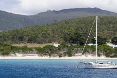 tasmanien 163 copyright piotr nogal