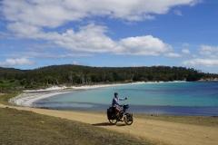 tasmanien 167 copyright piotr nogal