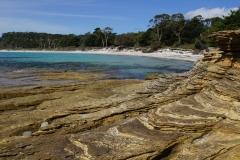 tasmanien 168 copyright piotr nogal