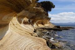 tasmanien 170 copyright piotr nogal