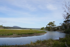 tasmanien 179 copyright piotr nogal