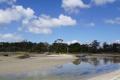 tasmanien 182 copyright piotr nogal