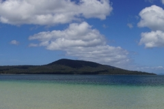 tasmanien 185 copyright piotr nogal