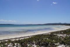 tasmanien 195 copyright piotr nogal