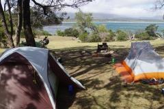 tasmanien 198 copyright piotr nogal