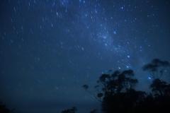 tasmanien 203 copyright piotr nogal