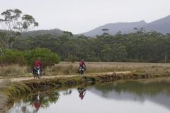 tasmanien 207 copyright piotr nogal