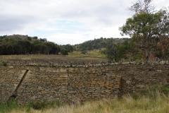 tasmanien 215 copyright piotr nogal