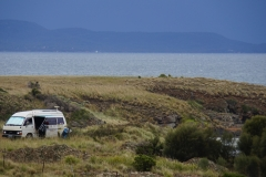 tasmanien 216 copyright piotr nogal