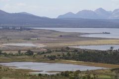 tasmanien 221 copyright piotr nogal