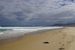 tasmanien 231 copyright piotr nogal