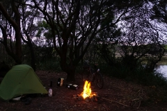 tasmanien 236 copyright piotr nogal