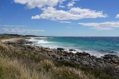 tasmanien 242 copyright piotr nogal