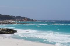 tasmanien 245 copyright piotr nogal