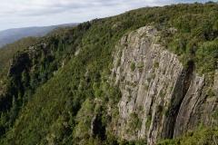 tasmanien 267 copyright piotr nogal