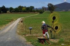 tasmanien 274 copyright piotr nogal