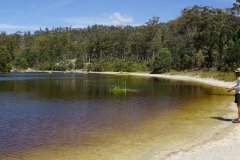 tasmanien 282 copyright piotr nogal