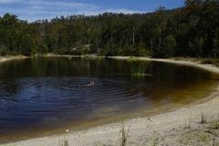 tasmanien 283 copyright piotr nogal