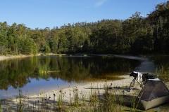 tasmanien 284 copyright piotr nogal