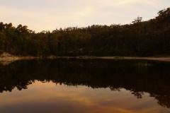 tasmanien 288 copyright piotr nogal