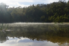 tasmanien 292 copyright piotr nogal