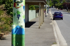 tasmanien 295 copyright piotr nogal