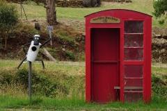 tasmanien 303 copyright piotr nogal