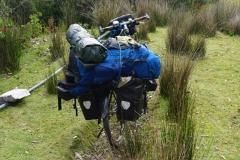 tasmanien 316 copyright piotr nogal