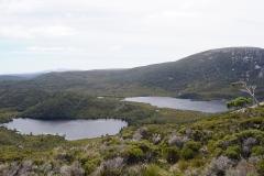 tasmanien 318 copyright piotr nogal