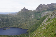 tasmanien 319 copyright piotr nogal