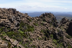 tasmanien 327 copyright piotr nogal