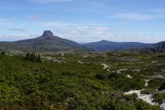 tasmanien 331 copyright piotr nogal