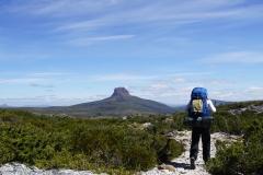 tasmanien 332 copyright piotr nogal
