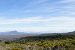 tasmanien 338 copyright piotr nogal