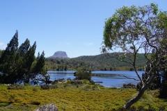 tasmanien 354 copyright piotr nogal