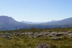 tasmanien 359 copyright piotr nogal
