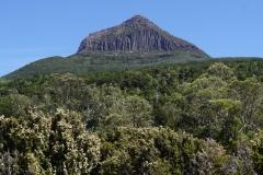 tasmanien 366 copyright piotr nogal