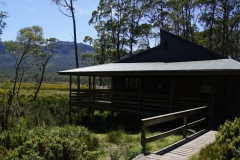 tasmanien 370 copyright piotr nogal