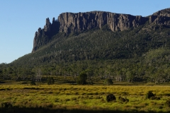 tasmanien 371 copyright piotr nogal